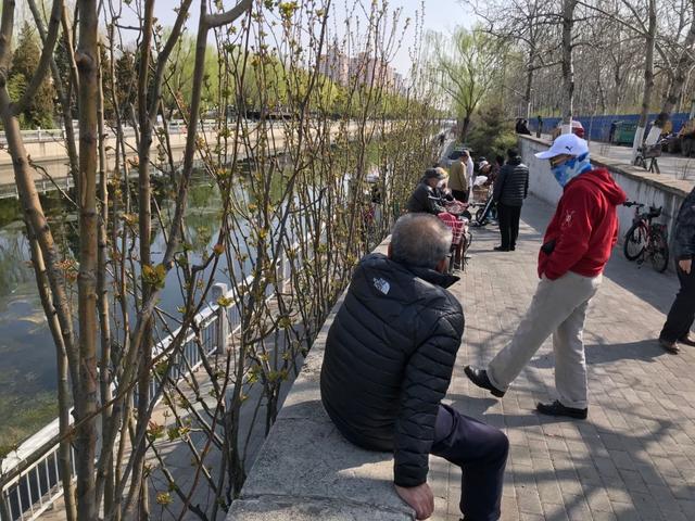 「北京日报客户端」卖花卖鸟、街头理发……南护城河边人群密集,口罩半戴不戴