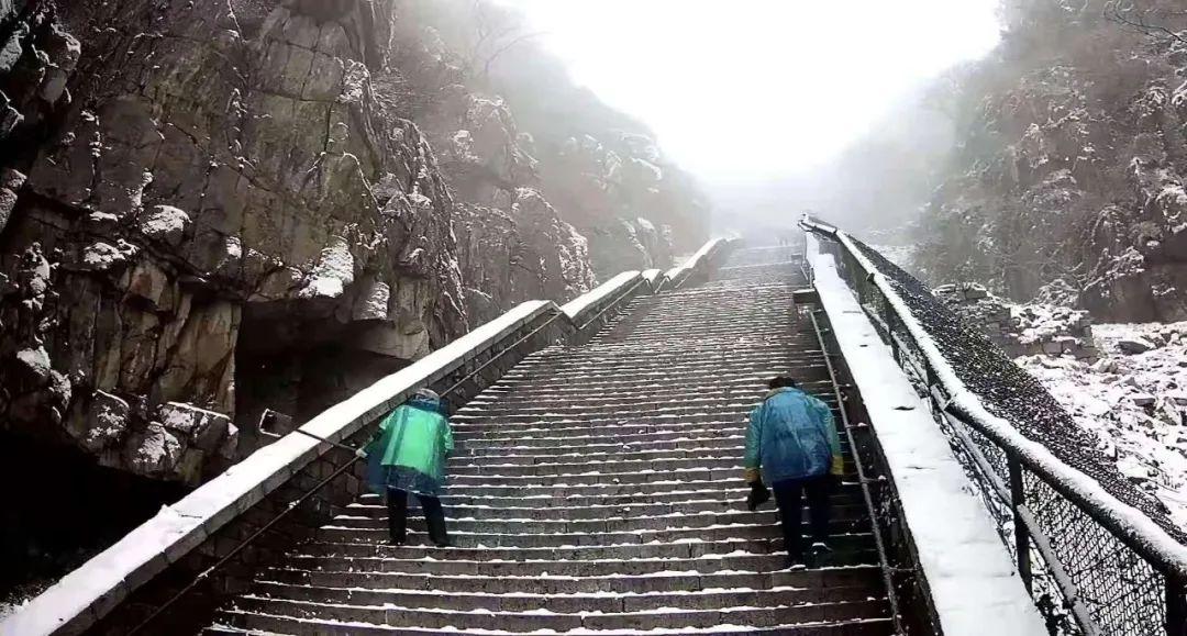 #泰安#瑞雪丰年,国泰民安!看,泰安今冬第一场雪,下成这般仙境模样!