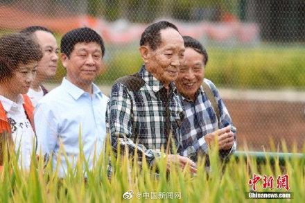 袁隆平逝世 外媒評價袁隆平是科學英雄 留下世界性遺產-圖2